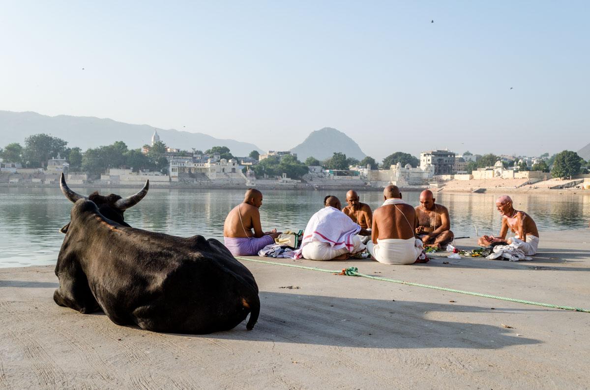 Kam do Indie Pushkar